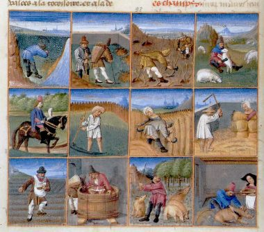 Agricultural calendar from a manuscript of Pietro de' Crescenzi