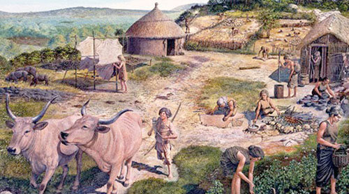 Division of labor in Neolithic period reconstruction