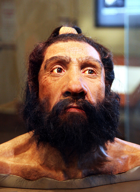 Reconstraction of Neanderthal heads. Source: Flickr, User: Tom Evanson