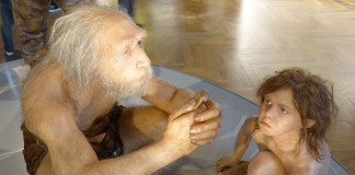 Neanderthal-recontruction-foto-by-Wolfgang Sauber
