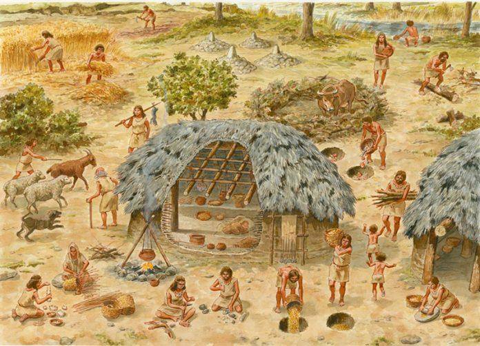 Neolithic Community. Illustration by Francesc Ràfols. Source: www.pastwomen.net/en/historia/neoliticopleno