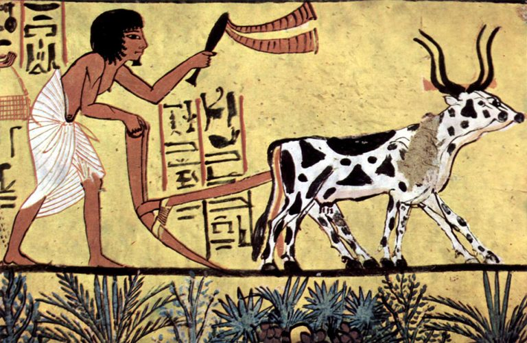 What food and drink were Ancient Egyptians consumed?
