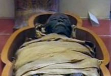 Mummy in sarcophagus