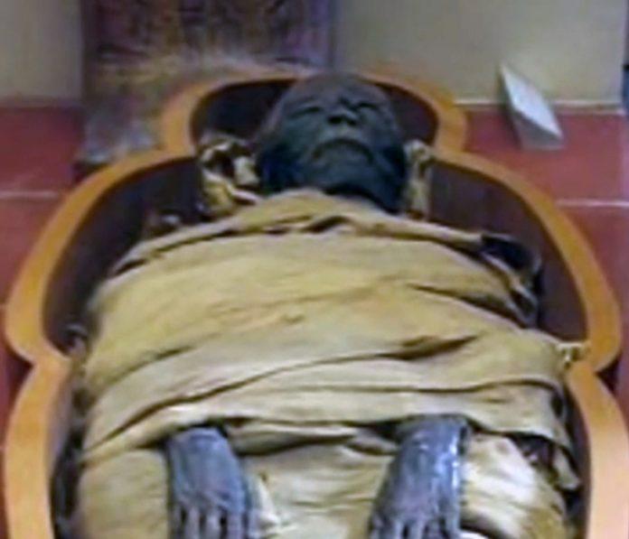 Mummy in sarcophagus